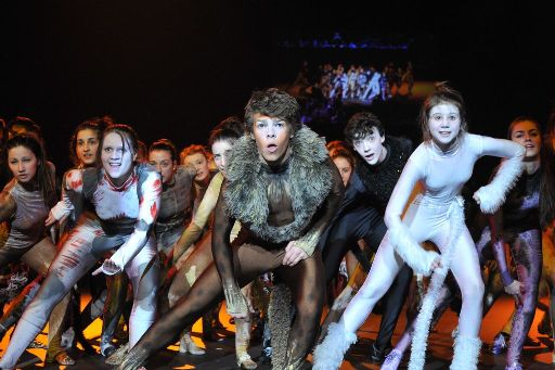 Galway Stagecoach Theatre School